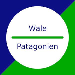 Wale in Patagonien